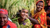অর্থনৈতিক সাফল্যে ভারতের চেয়ে ২৮ ধাপ এগিয়ে বাংলাদেশ
