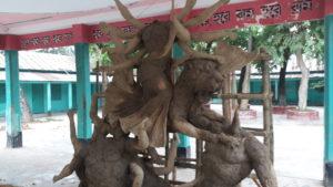 Akhaura pic-29