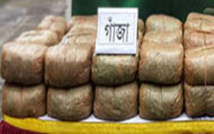 ব্রাহ্মণবাড়িয়া বিজয়নগরে সাড়ে ৩ মণ গাজাসহ মাদক ব্যবসায়ী আটক
