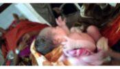 ব্রাহ্মণবাড়িয়ায় সিজারের সময় নবজাতকের পেট কেটে ফেললেন চিকিৎসক