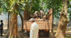 আখাউড়ায় ধ্বংসের জন্য আনা রাবার 'বিনে পয়সায়' দেয়া হলো পছন্দের প্রতিষ্ঠানকে